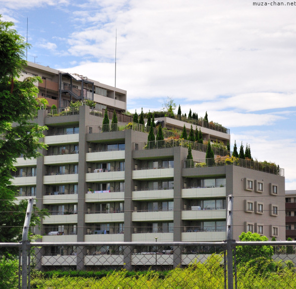 Building in Suginami