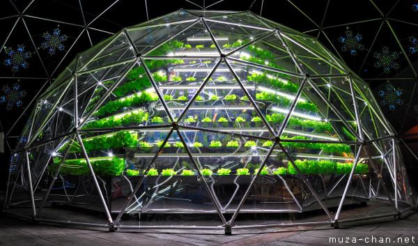 Hydroponic garden Green Sphere, Tokyo Dome, Tokyo