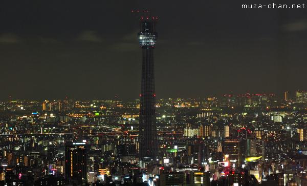 Tokyo Sky Tree, Night View from Sunshine 60, Tokyo