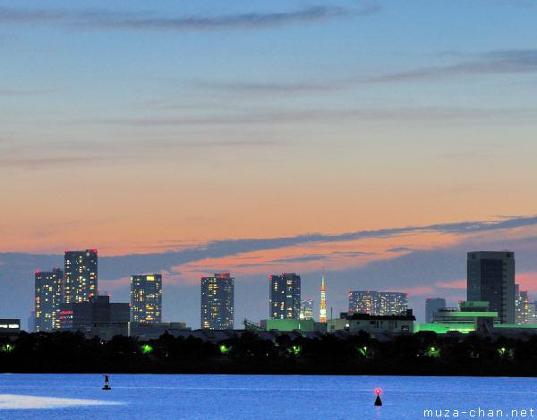 Tokyo Tower, View from Kasai Rinkai Park