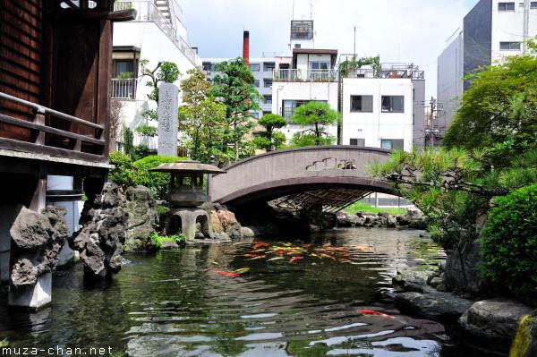 Traditional Japanese Garden, Tokyo