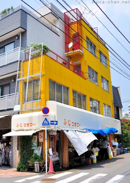 Narrow Building, Nishi-Asakusa, Tokyo