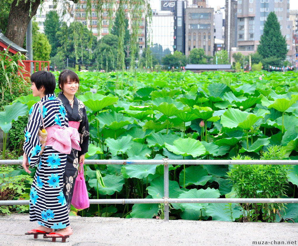 Ueno Lotus Pond