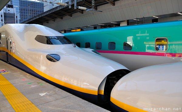 Shinkansen E4-series, Tokyo Station