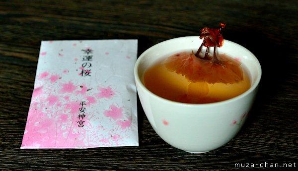 Sakura tea, Heian Jingu