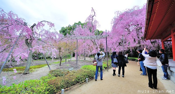 Higashi Shin'en (East Garden), Heian Shrine, Kyoto