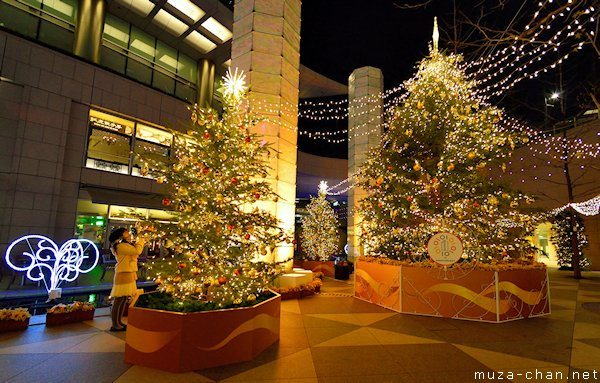 Shiodome Christmas Trees, Minato, Tokyo