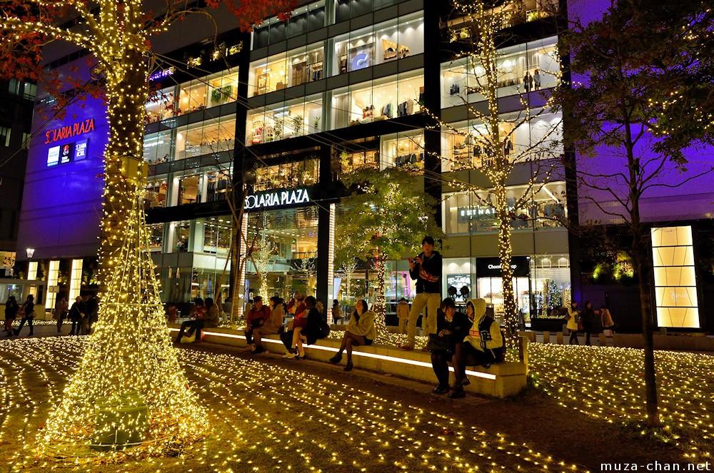 Big Christmas Trees