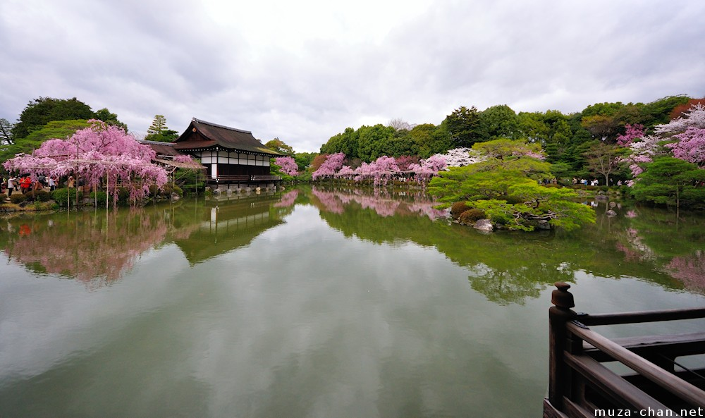 Simply Beautiful Japanese Scenes Cherry Tree Lined Pond