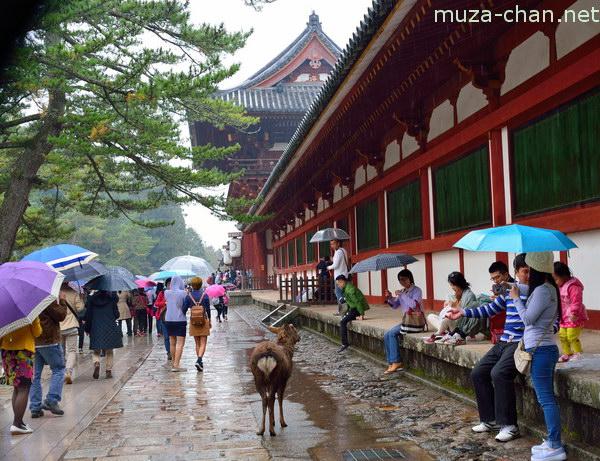 Chumon Gate, Todaiji Temple, Nara