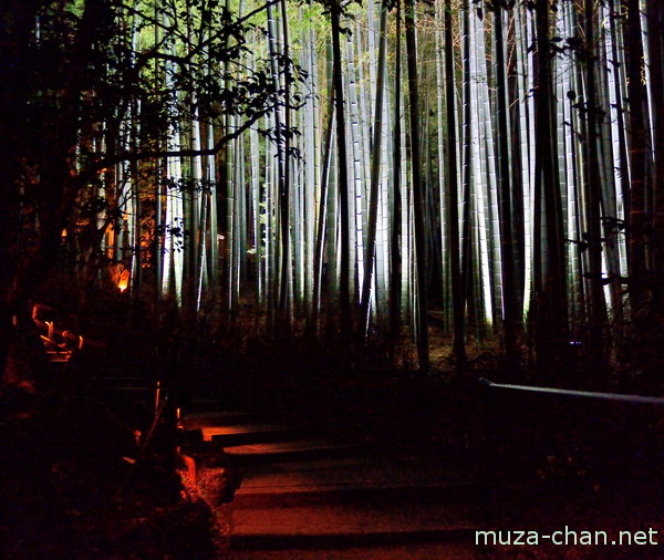Garden of Soami, Shoren-in, Higashiyama, Kyoto
