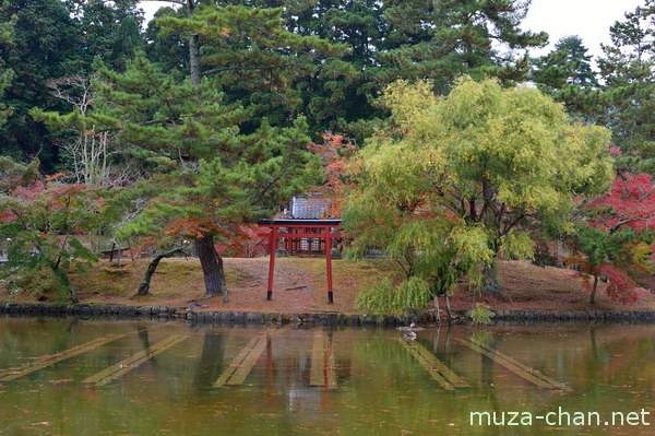 Itsukushima Shrine, Kagami-ike pond, Todaiji Temple, Nara