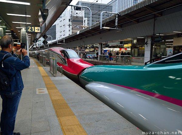 JR East, Shinkansen E5, E6 series