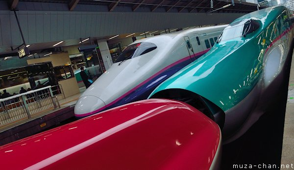 JR East, Shinkansen E5, E6 series