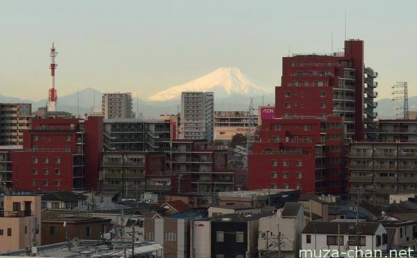 Mount Fuji, Omiya, Saitama