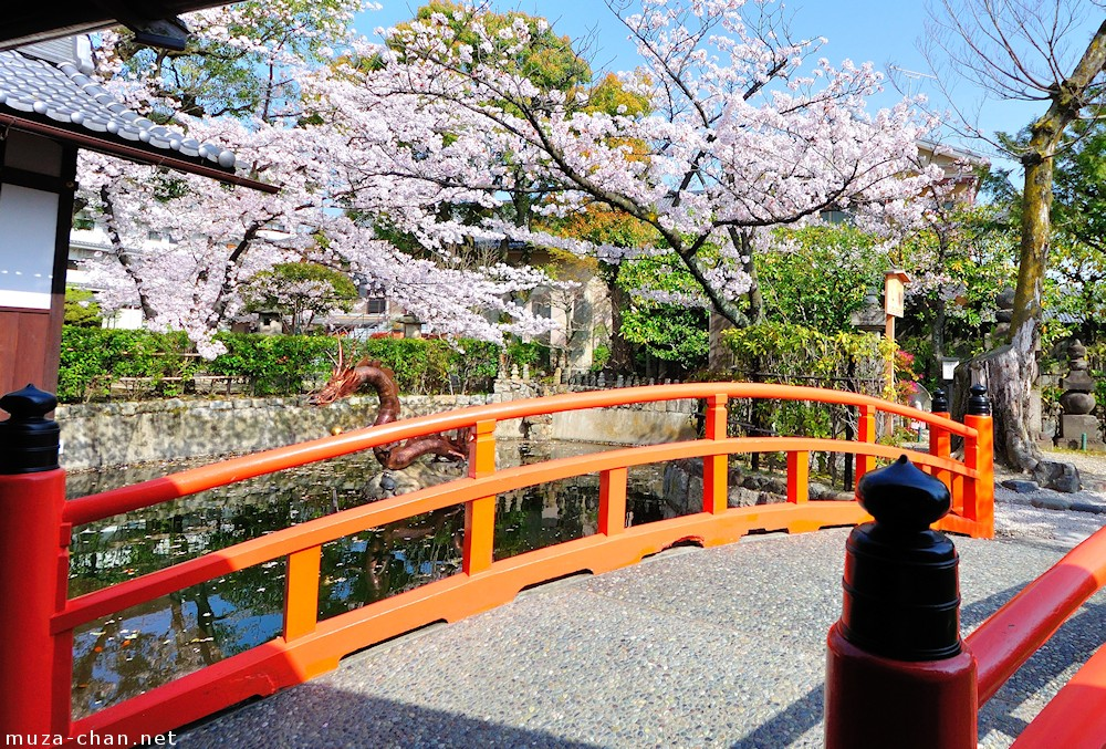 Simply Beautiful Japanese Scenes Red Bridge And Cherry Blossoms At