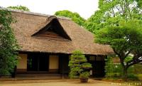 Japanese thatched roofs