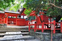 Japanese stories, Nanairo-no-yadorigi, Kasuga Taisha's magical tree