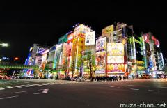 Akihabara crossing wide angle night photo