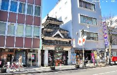 Japanese architecture, Castle style bookstore