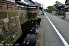 Samurai town street with ornamental carps