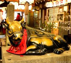 Ushi-san, the cow statue