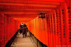 Defining images of Japan, thousands of torii in Kyoto