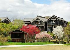 Simply beautiful Japanese scenes, Spring in Gifu