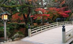 Simply beautiful Japanese scenes, Hanami-bashi in autumn