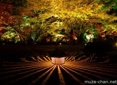 Hogon-in Kyoto autumn illumination