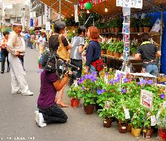 TV Cameraman at Iriya Asagao Ichi