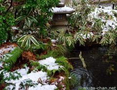 Aoyagi Samurai house garden in winter