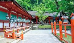 Shinto Shrines, Taisha