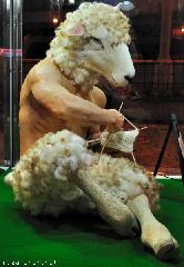 The Knitting Ram from Ueno