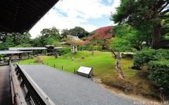 Visiting Kyoto, the Kodaiji garden