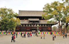 Japanese traditional architecture, Kyoto To-ji golden hall