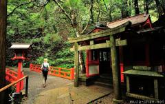 Temple in the Kurama mountain forest