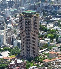 Tokyo Architecture, Tree-shaped Tower