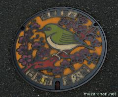 About Japan from... manhole covers, Miyazaki Mejiro