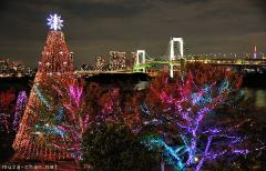 Tokyo Winter Illuminations, the Daiba Memorial Tree