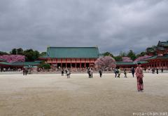 Blooming Sakura at Heian Shrine