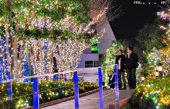 Tokyo Christmas Illuminations, winter walk in Shinjuku Southern Terrace and a travel tip