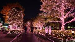 Shinjuku Southern Terrace delicate pink lights