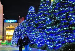 Shinjuku Southern Terrace Winter Illumination