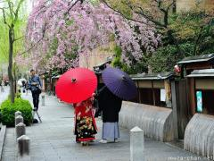 Hanami and traditional Japanese clothing