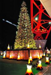 Tokyo Tower Christmas Tree, for a romantic Christmas night