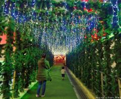 Tokyo Tower's tunnel of light, and wishes for the next year