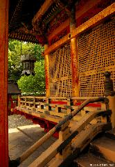 On the Stairs of Toshougu Shrine