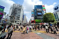 Shibuya street scene, crowds and billboards