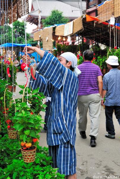 Hozuki Ichi (Chinese lantern plant fair)